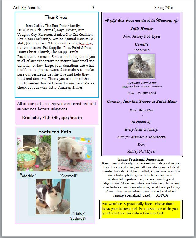 Spring 2016 Page 3